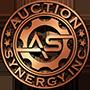 Auction Synergy
